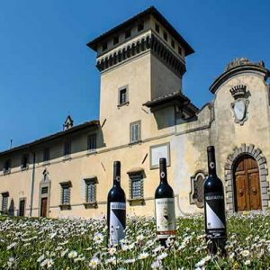 Large mediterranean-style building set in field of daisies with three bottles of wine.
